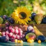 Late Summer and the Earth Element