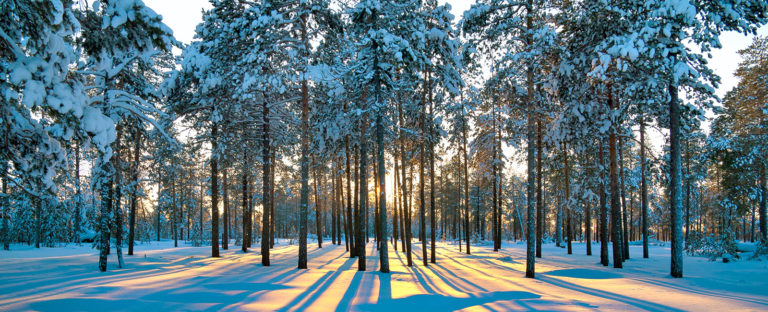 Winter Southwell Acupuncture Clinic